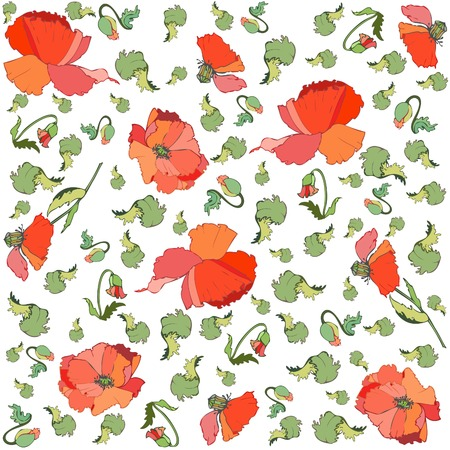 Floral background. Poppy. Vector