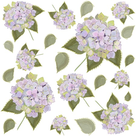Background. Hydrangea.