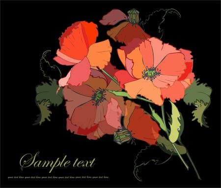 Greeting card with a bouquet of poppies. Vector