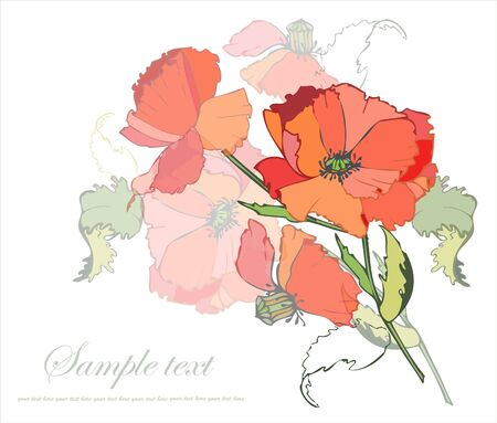 cartoon bouquet: Greeting card with a bouquet of poppies.