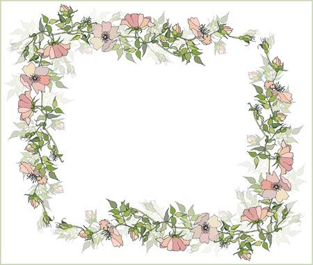claret red: Tarjeta de felicitaci�n hermosa con la imagen de una rosa salvaje.Marco decorativo.  Vectores