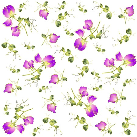 Seamless background from a flowers ornament, fashionable modern wallpaper or textile.Fragrant pea.