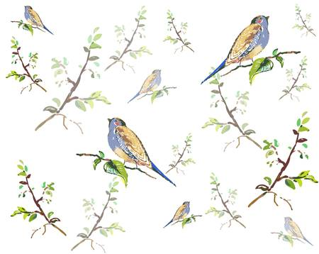 Seamless background. Illustration of birds. Vector