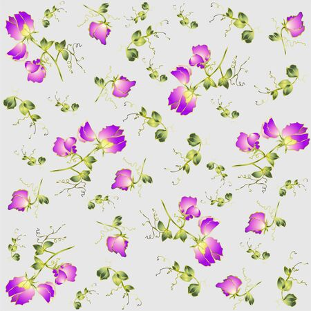 Seamless background from a flowers ornament, fashionable modern wallpaper or textile.Fragrant pea. Vector