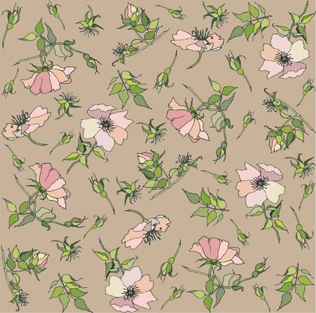 Seamless  background. Wild  rose. Vector