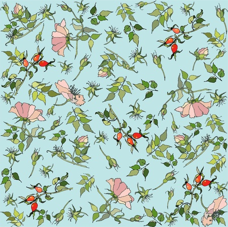 Seamless  background with wild rose.  Vector