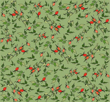 Seamless background with  berries of a dogrose. Vector
