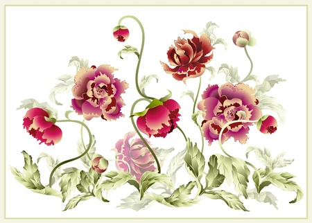 patter: Greeting card with peony. Illustration peony.
