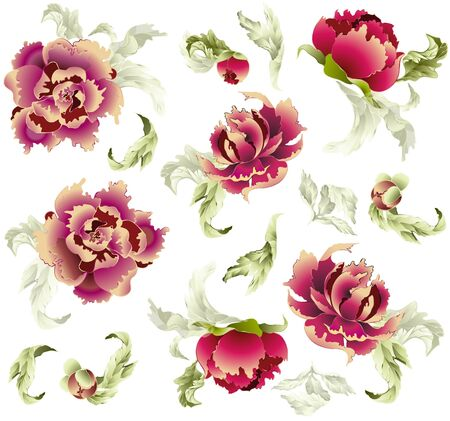 Seamless background from a flowers ornament, fashionable  modern wallpaper  or  textile Illustration