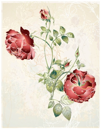Greeting card with rose. Illustration  roses. Çizim