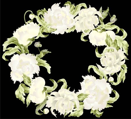 Beautiful decorative framework with peony. Illustration peony. Vector