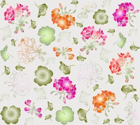 geranium: Seamless background. Illustration geranium.
