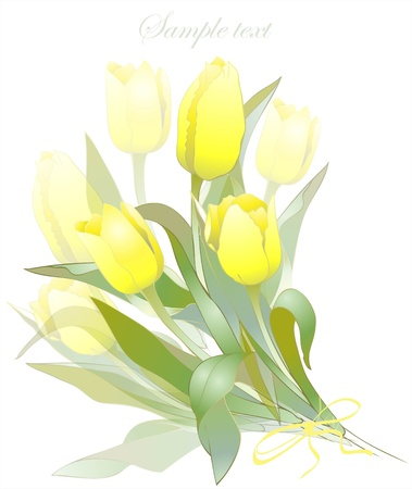 Bouquet of tulips .  Buds and flowers of a tulips.  Spring tulip flowers bunch. Vector
