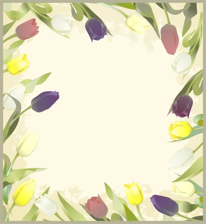 Greeting card with tulips. Colorful fresh spring tulips. Vector
