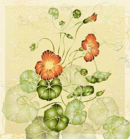 hand drawn flower: Greeting card with nasturtium. Illustration nasturtium. Illustration