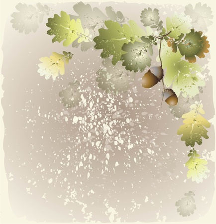 Beautiful decorative framework with acorns. Greeting card with acorns.Autumn  background.  Vector