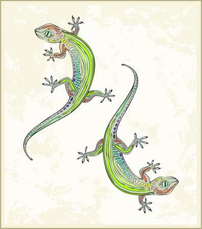 herpetology: Illustration lizard. Greeting card with two gecko.  Animal � lizard, gecko, vector. Illustration