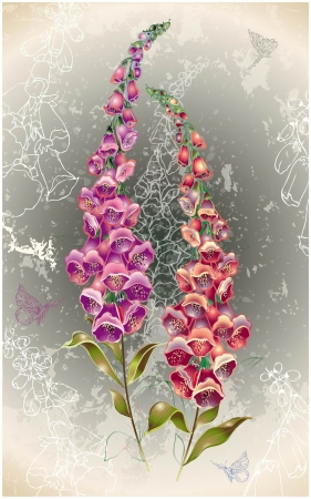 Greeting card with a foxglove end butterflies. Illustration  foxglove. Vector