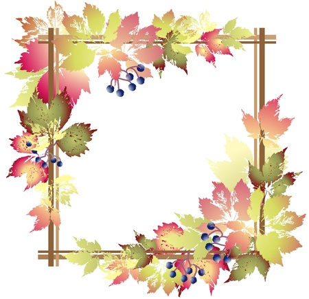 Greeting card with wild grapes. Decorative framework with wild grapes.Autumnal background.       Vector