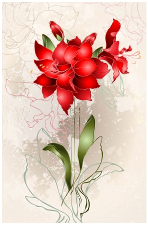 Beautiful greeting card with Amaryllis (Hipperastrum). Floral background.