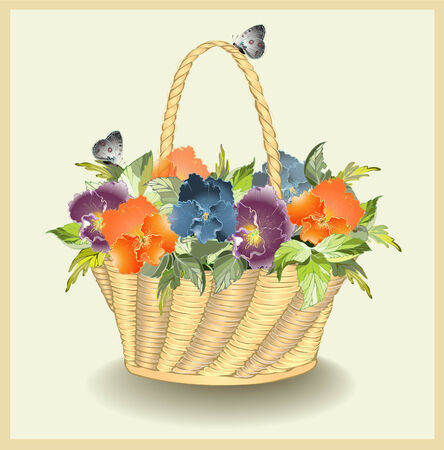 pansies: Greeting card with a basket with pansies.