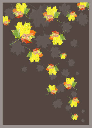 autumn garden: Greeting card with maple leaves. Illustration of  leaves of a maple.  Autumnal background. Illustration