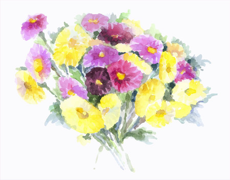 flowerhead: Bouquet of asters on a white background