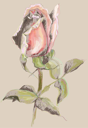 Greeting card with rose. Illustration  roses. Beautiful decorative framework with flowers.