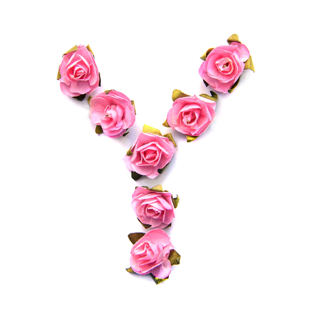 Letter Y of English alphabet from small pink roses, isolate on white background