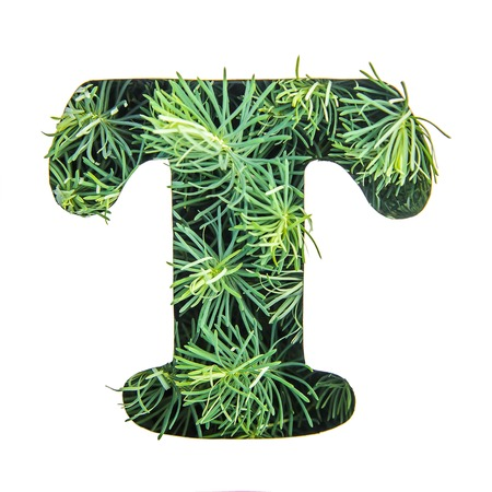 Beautiful letter T of English alphabet made of green grass, portulac, isolate on white background
