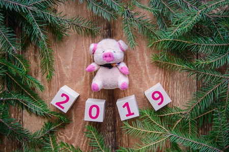 Christmas picture 2019 new year and a toy little pink pig in a frame of green fir branches on a wooden background