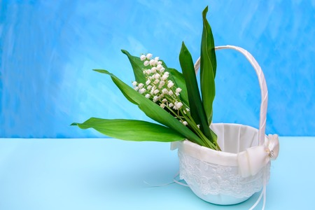 Bouquet of lilies of the valley in a white basket on a blue background