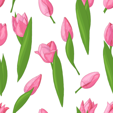 Vector seamless pattern with spring pink tulips on white background