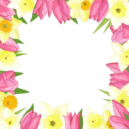 Marco de vector de flores de primavera: tulipanes y narcisos sobre fondo blanco Ilustración de vector