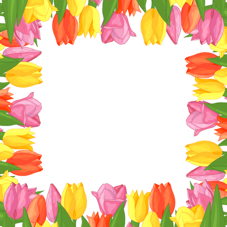 Vector frame of colorful tulips: yellow, pink, red, with a copy space