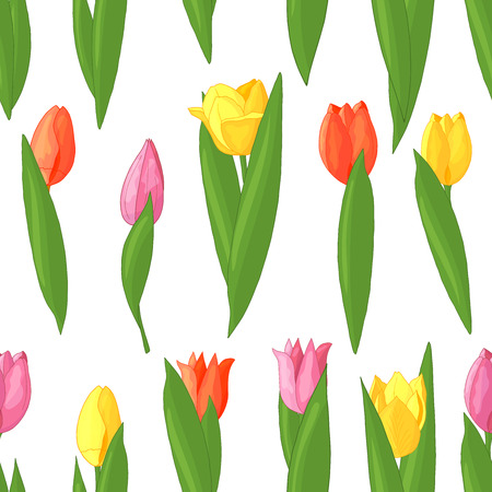 Vector seamless pattern of red, pink, yellow tulips on white background