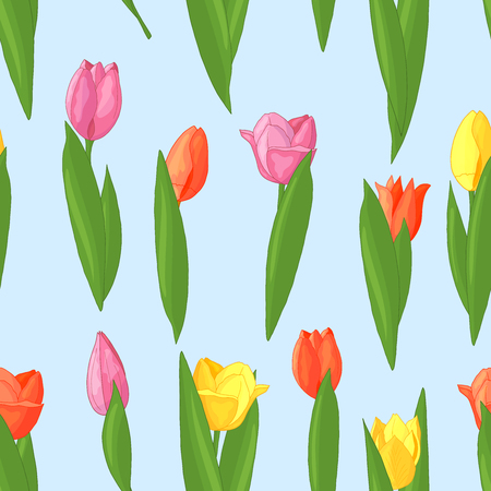 Vector seamless pattern of red, pink, yellow tulips on blue background