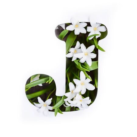 The letter J of the English alphabet of small white chionodoxa flowers Standard-Bild - 125735673