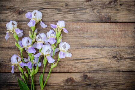 Beautiful purple flowers irises on a wooden rustic background in summer, top view, with a copy space Standard-Bild - 125735749