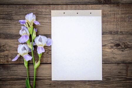 Beautiful purple flowers irises and a sheet of paper on a wooden rustic background in summer, top view, with a copy space Standard-Bild - 125735747
