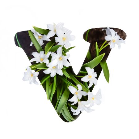 The letter V of the English alphabet of small white chionodoxa flowers Standard-Bild - 125735827