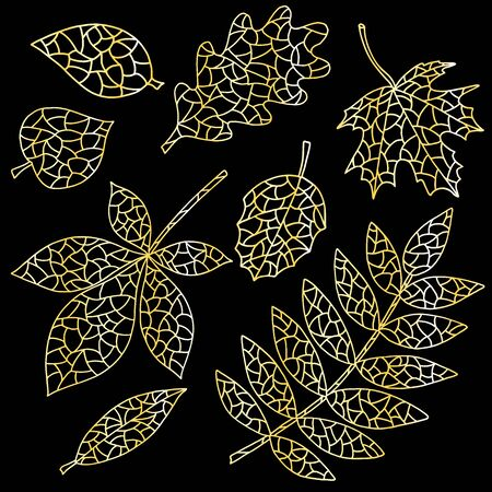 Beautiful set of abstract autumn leaves outline with gold effect on black background