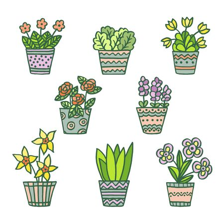 Vector set with hand-drawn colorful painted pots with indoor plants and flowers, patterned doodles, isolate on a white background