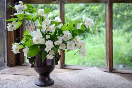 A large beautiful bouquet of Jasmine branches in a vase by a wooden window in the countryside Reklamní fotografie