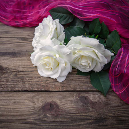 Three beautiful white roses and pink fabric on a wooden background, copy space