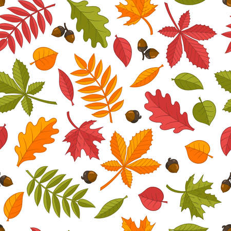 Vector seamless pattern of bright colorful autumn leaves: oak, maple, chestnut, rowan, birch, linden. Isolate on a white background