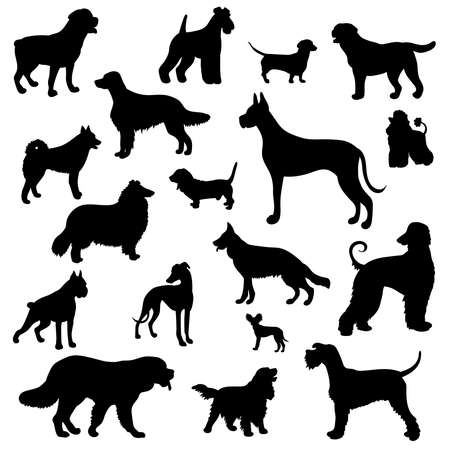 Vector set with black silhouettes of different dog breeds on a white background