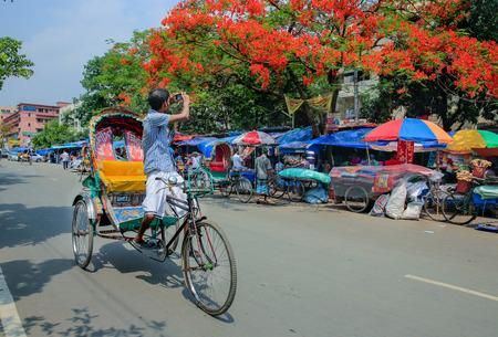 south asians: A rickshaw puller takes photographs of Summer flowers krishnachura using his cell phone at Dhakas Motijheel , Bangladesh. Editorial