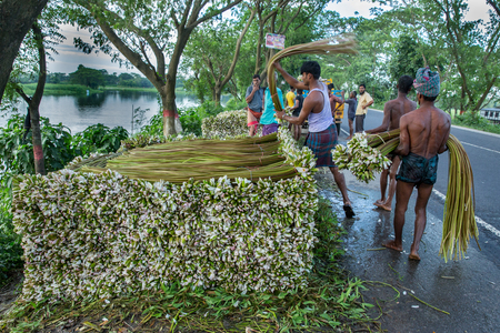 labouring: Water lily Vendors stack and sort through water lilies to sell at the market following a heavy rain fall and a vegetable crisis in Bangladesh.