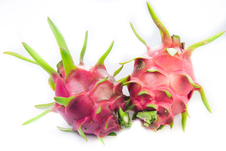 cereus: Dragonfruit with white background